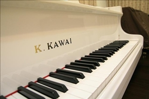世國琴行,高雄鋼琴,二手鋼琴,中古鋼琴,河合鋼琴,山葉鋼琴,高雄